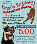 Everyday Adoption Center First Anniversary, 5/24/19