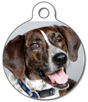 Dog Tag Art tag